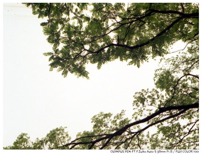 PEN-FT2011051613.jpg